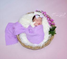 Photographe-nouveau-né